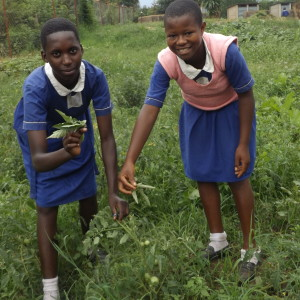 Ellen Nababue & Yudita Kansiime proudly show what they're growing!